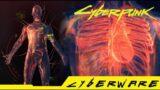 Cyberpunk 2077 – Where can you get Maneuvering System Rare Cyberware